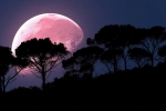 April's Super Pink Moon To Rise Today: Biggest Of The Year